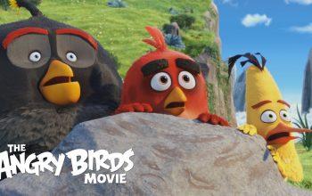 Angry Birds kritika