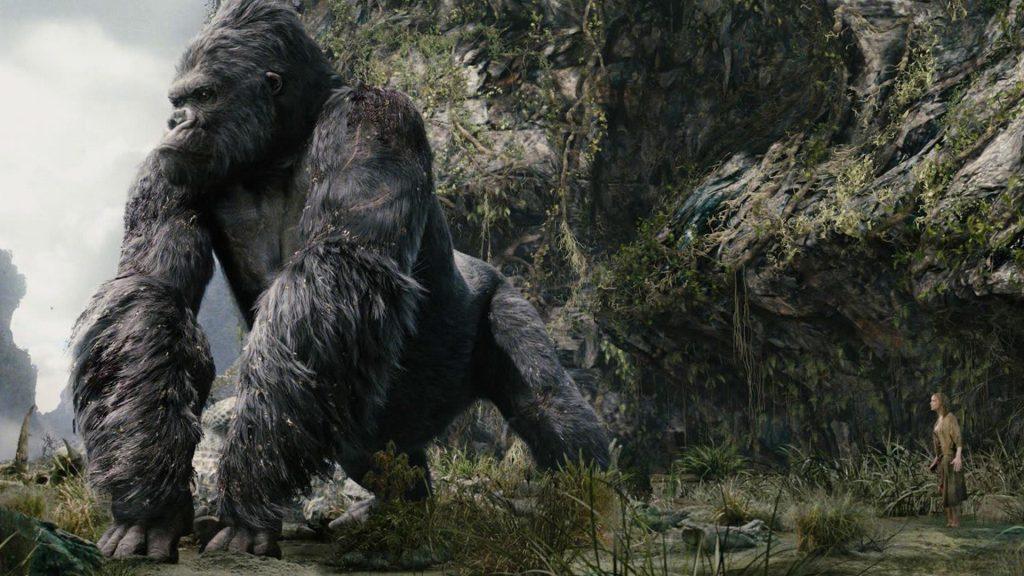 Milyen nagy egy gorilla fasz